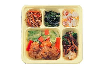 ヘルシー御膳®(おかず/5食)《エネルギー・塩分制限食》